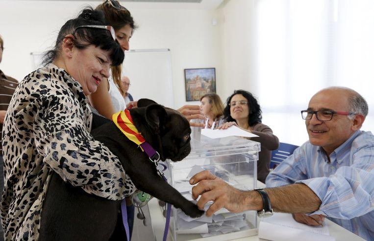 Een vrouw op het stembureau met haar hond, die de Catalaanse vlag om zijn nek heeft. Beeld reuters