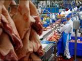 Nieuwsoverzicht | Slachterijwerkers zwijgen opgelegd - Miljoenen euro's steun voor Brabantse bedrijven