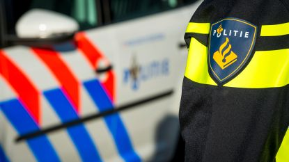 Baby nabij Amsterdam in kritieke toestand na hondenbeet in gezicht