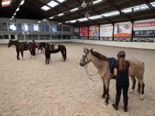 Kamper manege weet paardenziekte  te verdrijven en draait weer volle bak
