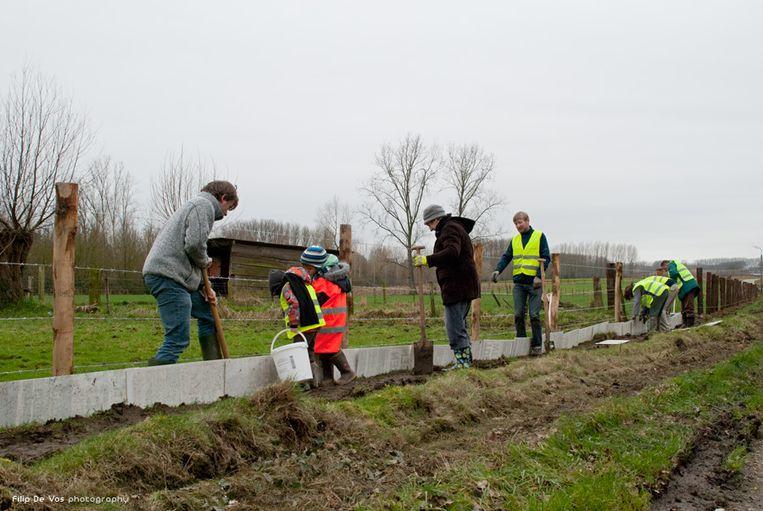 Natuurpunt zoekt helpende handen voor de paddenoverzetactie.
