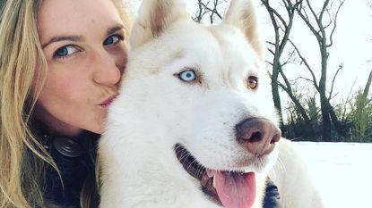 Wie heeft Kooza gezien? Jonge vrouw (28) bezorgd om vermiste husky