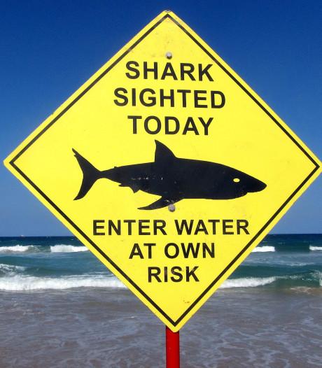 Opnieuw maakt haai slachtoffer voor Australische kust
