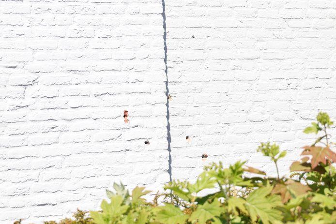 Kogelgaten in de muur van een woning in Waalwijk.
