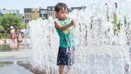 Nationaal hitterecord bijgesteld: 41,8 graden gemeten in Begijnendijk