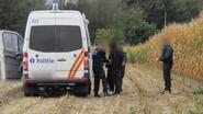 Politie haalt illegalen uit maïsveld