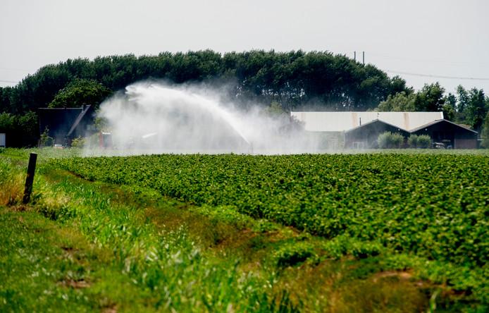 Beregenen met oppervlaktewater is tussen 09.00 en 18.00 uur verboden.