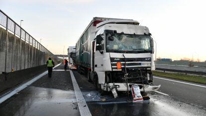 Drie vrachtwagens rijden tegen elkaar op E19 in Loenhout