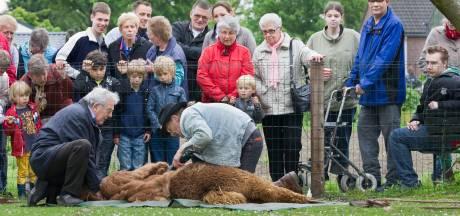 Eindelijk concreet plan voor Park Achterhoek in Winterswijk: zorgboerderij en groot zorghotel