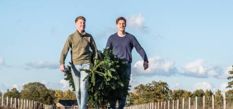 Tieners veroveren online kerstbomenhandel