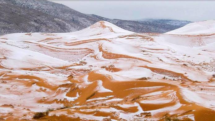 Op bepaalde plekken in de Sahara ligt nu een meter sneeuw.