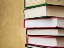 Duizend krabbels voor bibliotheek in Werkendam