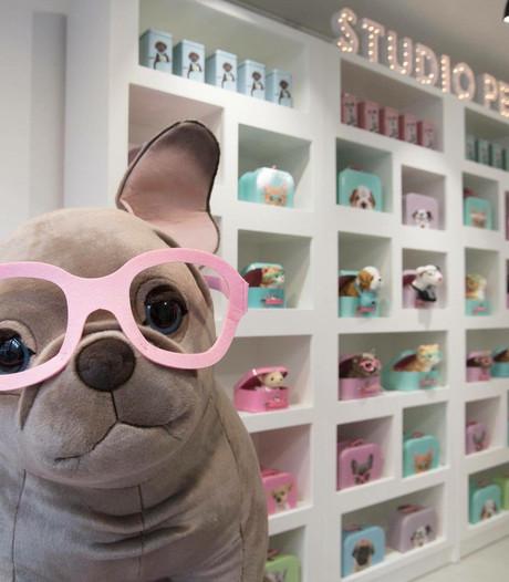 Win een pluche-versie van je huisdier in de Pup-upstore