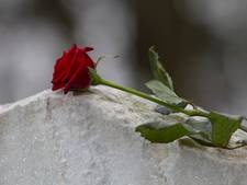 Zetten krijgt begraafplaats zo groot als voetbalveld