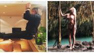 SHOWBITS. Jasper Steverlinck haalt vreemde toeren uit en Kat Kerkhofs zoekt haar Tarzan