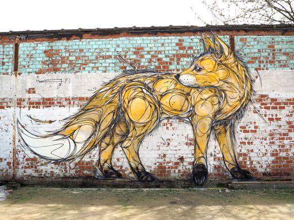 Fox - Vilvoorde