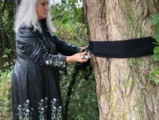 62 bomen met rouwbanden in 2 uur gekapt in Nijmegen