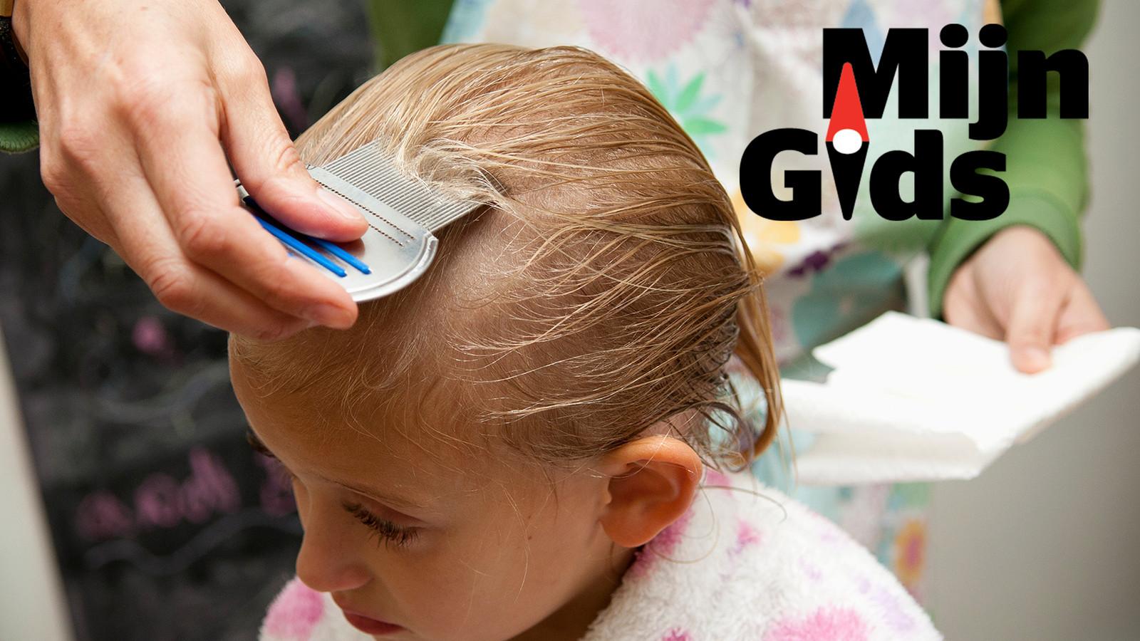 Kam het haar met de luizenkam, van voor naar achter en opnieuw van het ene oor naar het andere.