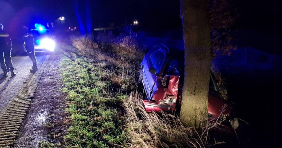 Automobilist gewond na frontale botsing tegen boom.