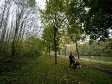 Inwoner Neder-Betuwe heeft verstand van bomen en ziet ze ook als handelswaar
