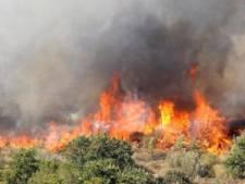 Duizenden vakantiegangers geëvacueerd van campings Zuid-Frankrijk vanwege brand