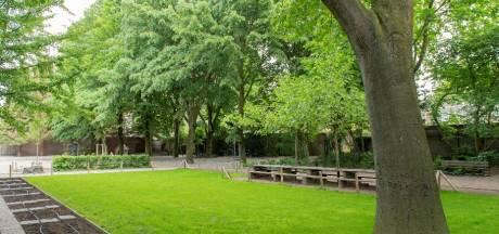 Na jaren werk is de verwaarloosde Kloostertuin weer groen pareltje in het stadshart: 'Een aanwinst'