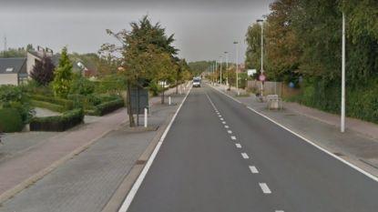 Ook fietspad wordt vernieuwd tijdens werken Pidpa op Grote Steenweg