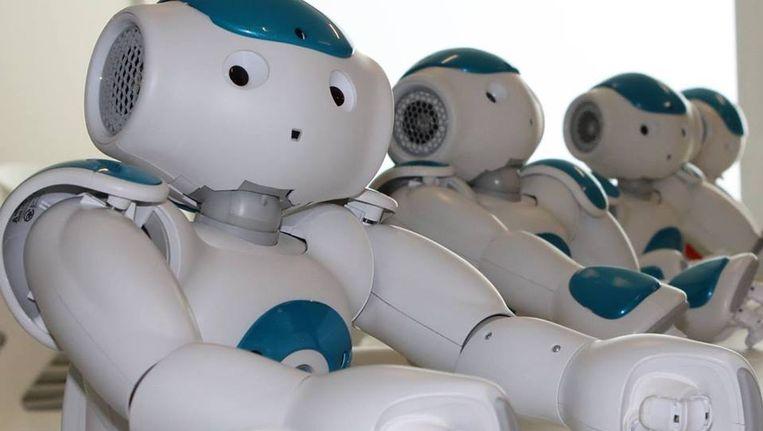 Een Zora robot.