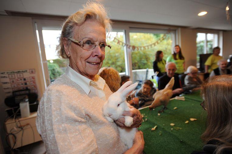 De rusthuisbewoners kregen kippen, konijnen en cavia's op bezoek.