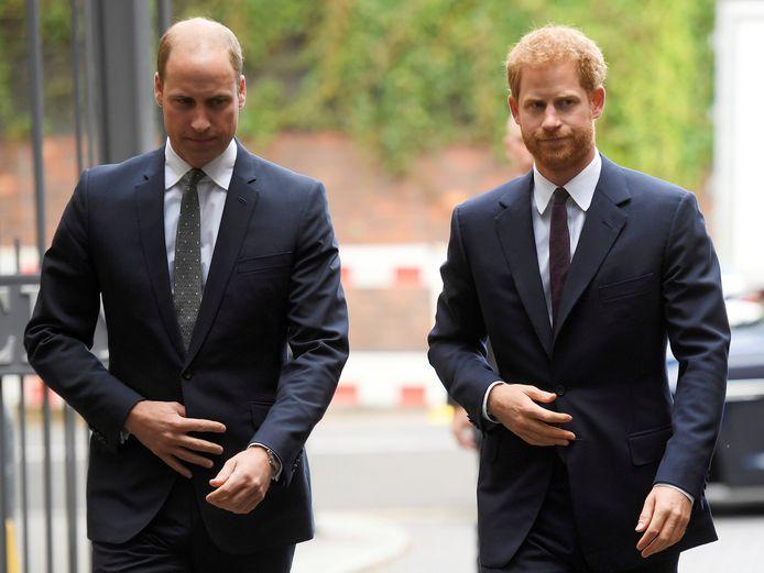 William en Harry
