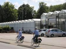 Glastuinder in Twello moet verkassen voor drie woningen (maar dat heeft geen haast)