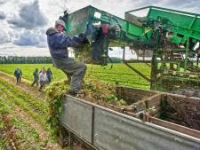 Meer huisvesting van arbeidsmigranten én spoedzoekers in gemeente Moerdijk