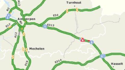 E313 richting Antwerpen volledig versperd door ongeval