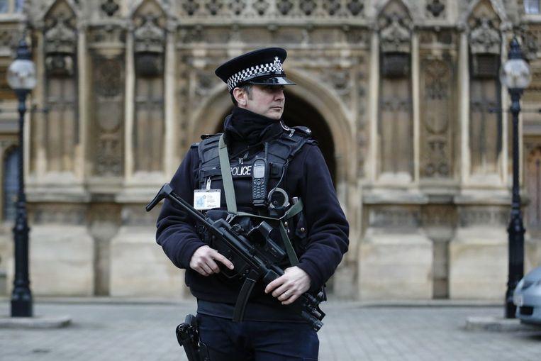 Politie voor het parlement in Londen. De Britse regering heeft de beveiliging opgeschroefd na de aanslagen in Frankrijk. Beeld reuters