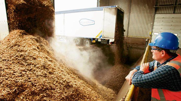 In een biomassacentrale wordt snoeihout verstookt, bijvoorbeeld om kassen warm te houden.