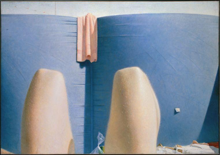 Windscherm, 1976 Beeld Pictoright