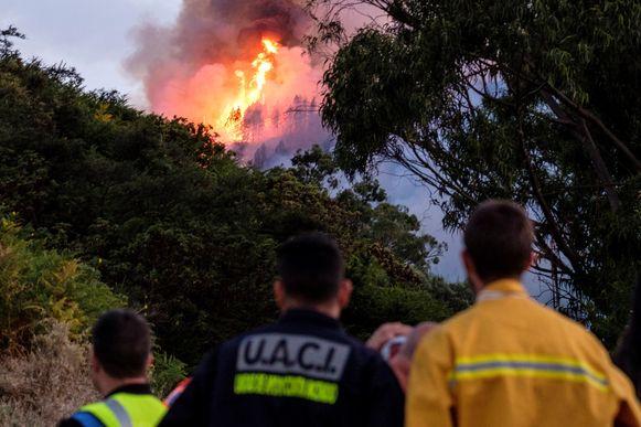 Brandweermannen zien het vuur oprukken op Gran Canaria.