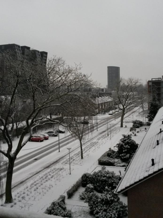 'Het is mooi wit op de Muzenlaan in Eindhoven', schrijft Ton Herben die deze foto naar het ED stuurde.