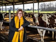 Boerendochter Babke helpt Sallandse boeren als erfcoach: 'Mensen maken zich continu zorgen'