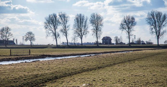 Bodemdaling in de polders