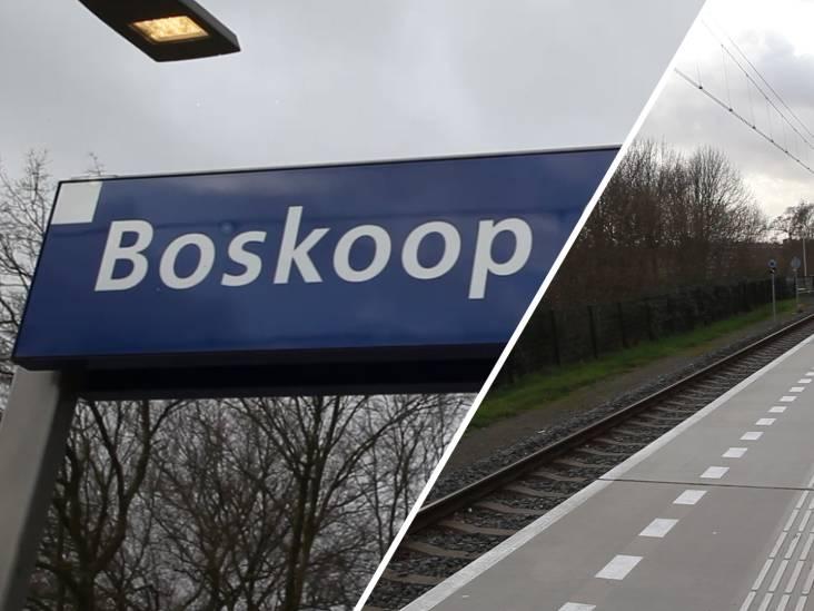 Waarom Boskoop Snijdelwijk bij beste stations van het land hoort