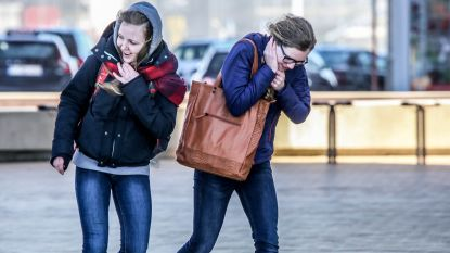 Frisse start van de week met flinke windstoten tot 80 kilometer per uur