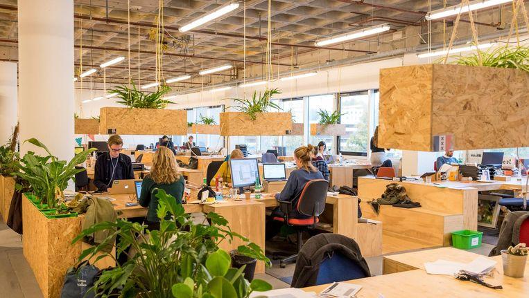 Zelfstandigen werken in een gemeenschappelijk kantoor. Beeld anp