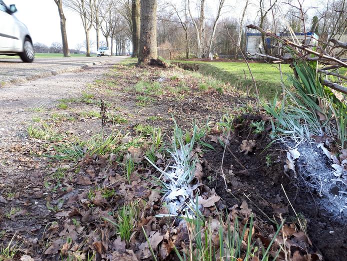 De plek waar het tragische eenzijdige ongeluk in Vriezenveen heeft plaatsgevonden waarbij een 14-jarige jongen om het leven is gekomen.