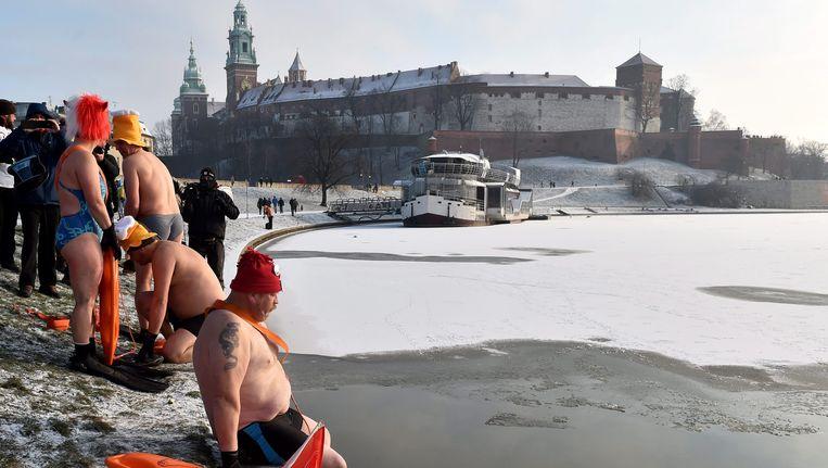 Niet alle Polen zijn onder de indruk van de kou, enkele enthousiastelingen die zich verenigen onder de naam 'De Walrussen' zwemmen in de rivier Wistula. Beeld EPA