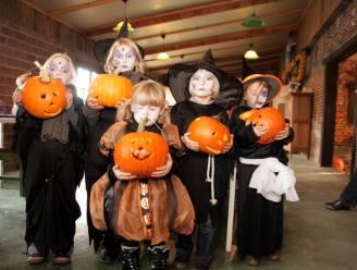 """Burgemeester roept op: """"Laat je kinderen met Halloween geen snoepjes halen van deur tot deur"""""""