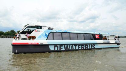 Waterbussen Aqua Jade en Aqua Emerald komen Antwerpse vloot versterken