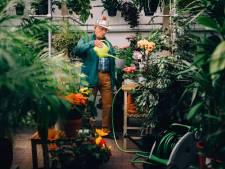 Ga je op vakantie? Vergeet de planten niet bij de 'Buitenpotse Opvang' te brengen