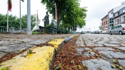 """Klein-Willebroek vraagt oplossing voor 'wielerterroristen': """"We worden van het voetpad voor onze eigen deur gereden"""""""