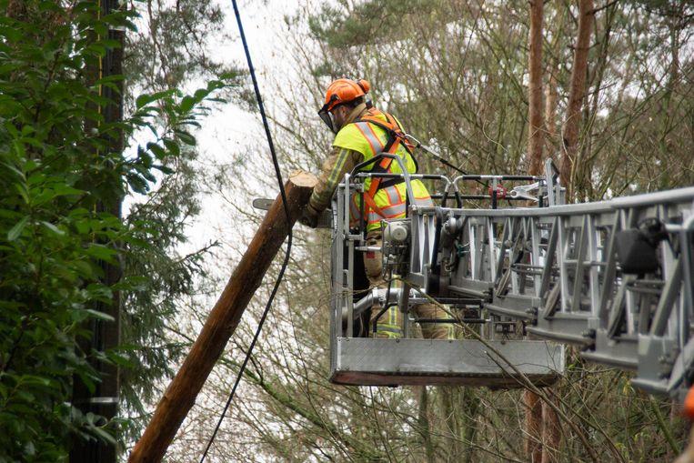 Onder meer op de Heide in Waasmunster moesten er bomen worden weggehaald van elektriciteitskabels.